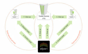 model_of_prime_brokerage_alpari